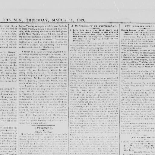 The sun  (New York [N Y ]) 1833-1916, March 11, 1869, Image