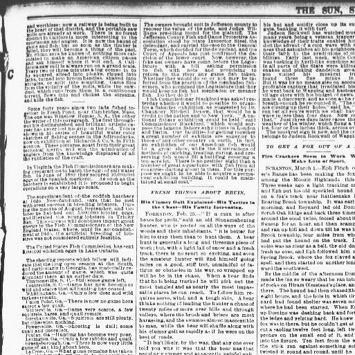 The sun  (New York [N Y ]) 1833-1916, March 02, 1890, Page 17, Image