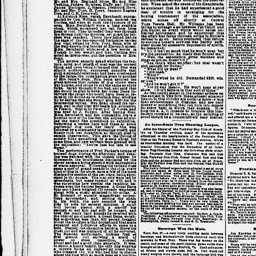 The Sun New York Ny 1833 1916 February 28 1891 Page 4