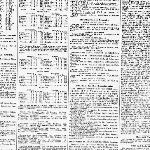 The sun  (New York [N Y ]) 1833-1916, January 29, 1895, Page 8