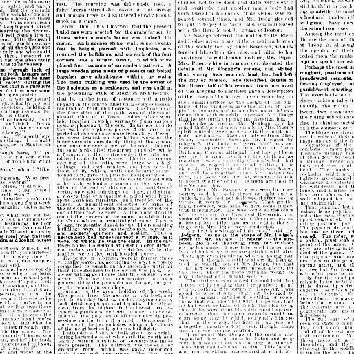 The sun  (New York [N Y ]) 1833-1916, March 01, 1896, Page 3