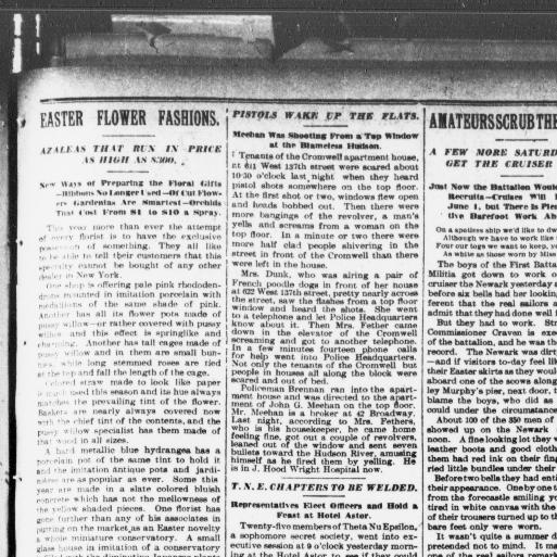 The sun  (New York [N Y ]) 1833-1916, March 31, 1907, Page 7, Image