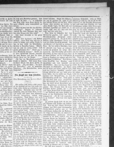 Der Deutsche Correspondent. (Baltimore, Md.) 1841 1918, November 30, 1902,  Der Sonntags Correspondent., Image 8 « Chronicling America « Library Of  Congress