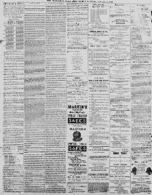 The Charleston Daily News January 01 1869 Image 3 About SC 1865 1873